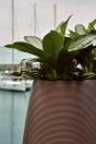 MyYour Pandora Pot plantenbak